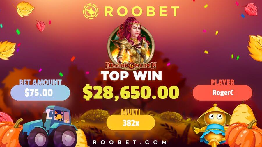how to play roobet